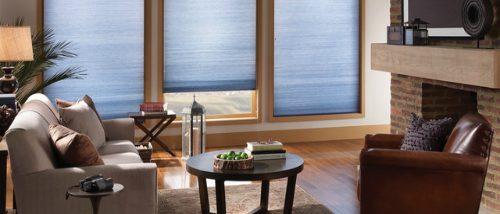 Simply Blinds & Awnings / Panel Blinds